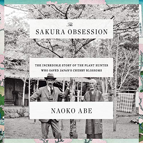The Sakura Obsession Audiobook By Naoko Abe cover art
