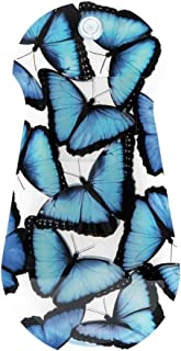 MODGY Expandable Suction Cup Vase Blue Morpho Butterfly