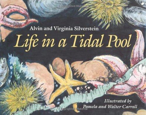 Life in a Tidal Pool