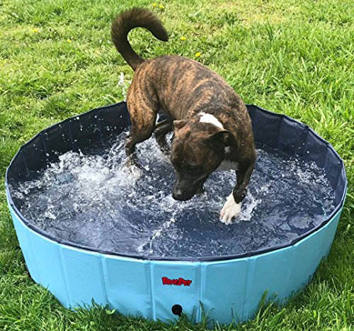 BINGPET Large Dog Swimming Pool Pet Bathtub Collapsible Puppy Bath Tub 47' 12'