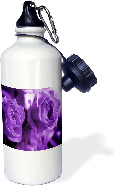 3dpink Three Dusty Purple pinks - Sports Water Bottle, 21oz (wb_6917_1)