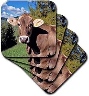 3dRose CST_82188_1 Italy, Dolomite Alps, Swiss Brown Cow-Eu16 Rer0140-Ric Ergenbright-Soft Coasters, Set of 4