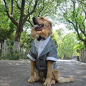 Lovelonglong Pet Costume Dog Suit Formal Tuxedo with Black Bow Tie for Medium Dogs Beagle Clothing Gray L-S