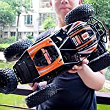 Kiditos MZ RC Cars All Terrain Remote Control High Speed Vehicle 1:10 Scale