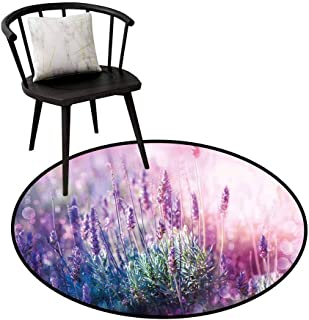 Round Area Rugs Living Room Carpet Lavender,Fantasy Dreamlike Herbal Meadow Close Up View Magical Nature Theme,Teal Light Pink Lilac,Rug Accent Mat for Livingroom Diningroom Bedroom 16