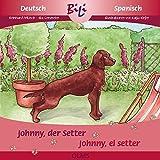 Johnny, der Setter /Johnny, el setter irlandés