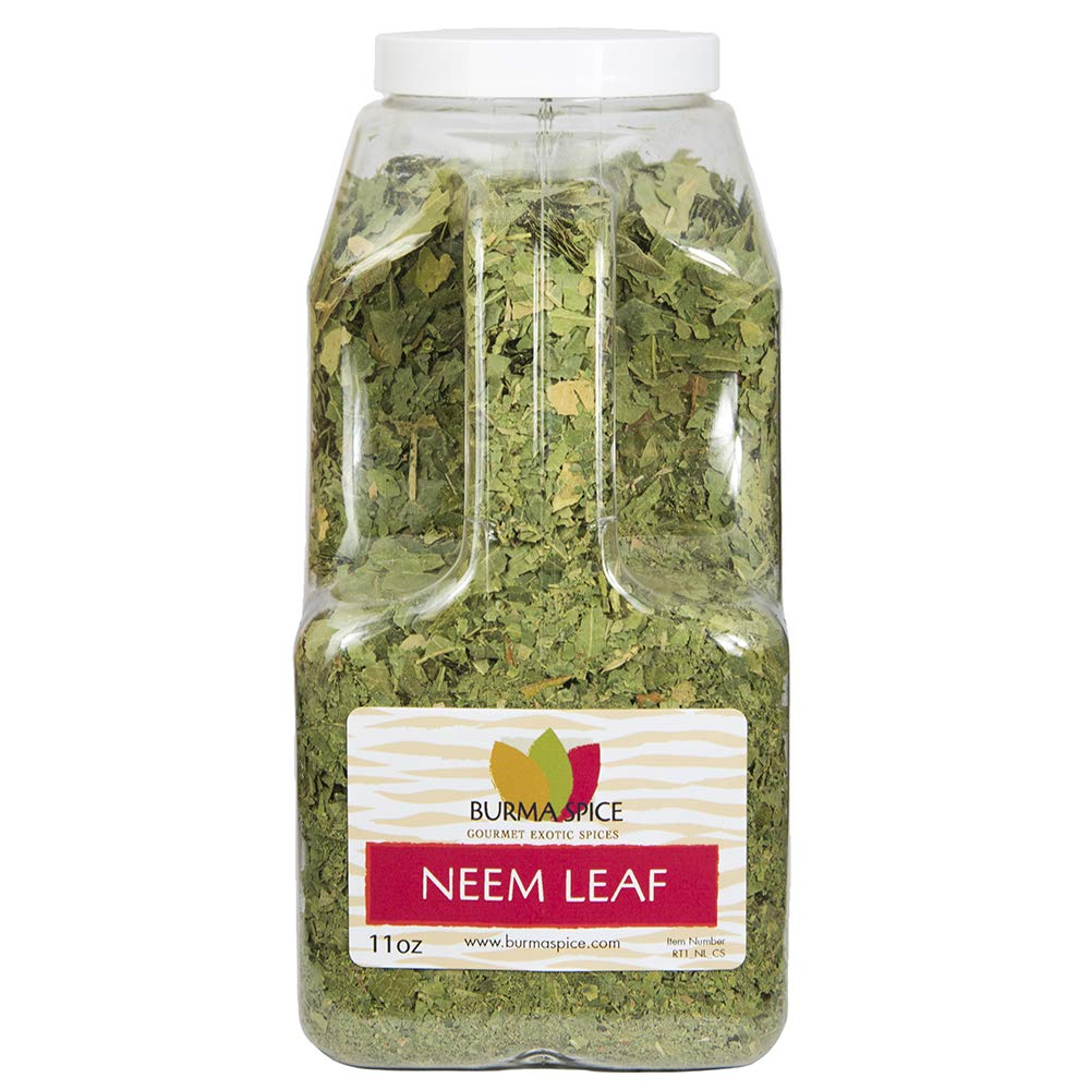 Neem Leaves Nimtree Max 68% OFF Regular dealer - Indian for Ideal Lilac Tea Infusions