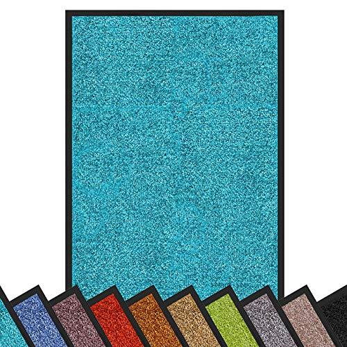 Floordirekt Schmutzfangmatte Rhine | waschbare & leistungsstarke Fußmatte | Sauberlaufmatte mit Rutschfester Rückseite | Türmatte in vielen Größen & Farben (Türkis, 60 cm x 90 cm)