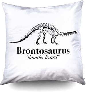 Brontosaurus Thunder Lizard Dinosaur Decorative Throw Pillow Case 18 x 18 Inch,Home Decoration Pillowcase Zippered Pillow Covers Cushion Cover with Words for Book Lover Worm Sofa Couch