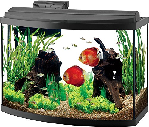 Aqueon Deluxe LED Bow Front Aquarium Kit Black 36 Gallon