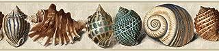 York Wallcoverings Nautical Living Shell Border, Tan/Robin's Egg Blue/Teal/Terra Cotta/Black/Marine Blue/Indigo Blue