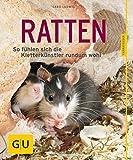 Ratten als Heimtiere, glücklich & gesund gelb 12 x 3,5 cm: So fühlen sich die Kletterkünstler rundum wohl (GU Tierratgeber)