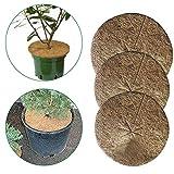 Lot de 10 disques de paillage en fibre de coco - Tapis de paillage rond en fibre de coco - Pour le jardinage