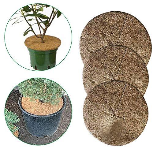 Banane Lot de 10 disques de coco pour paillis de plantes en pot - Protection contre les mauvaises herbes - Biodégradable - Pour le jardinage (20/30/40 cm)