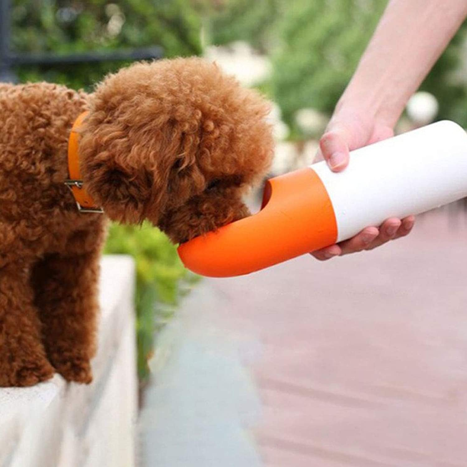 Dog Water Bottle for Walking  Water Filtration Outdoor, Antibacterial OneHand Watering, Easily Taking for Travel Portable Dog Water Bowl