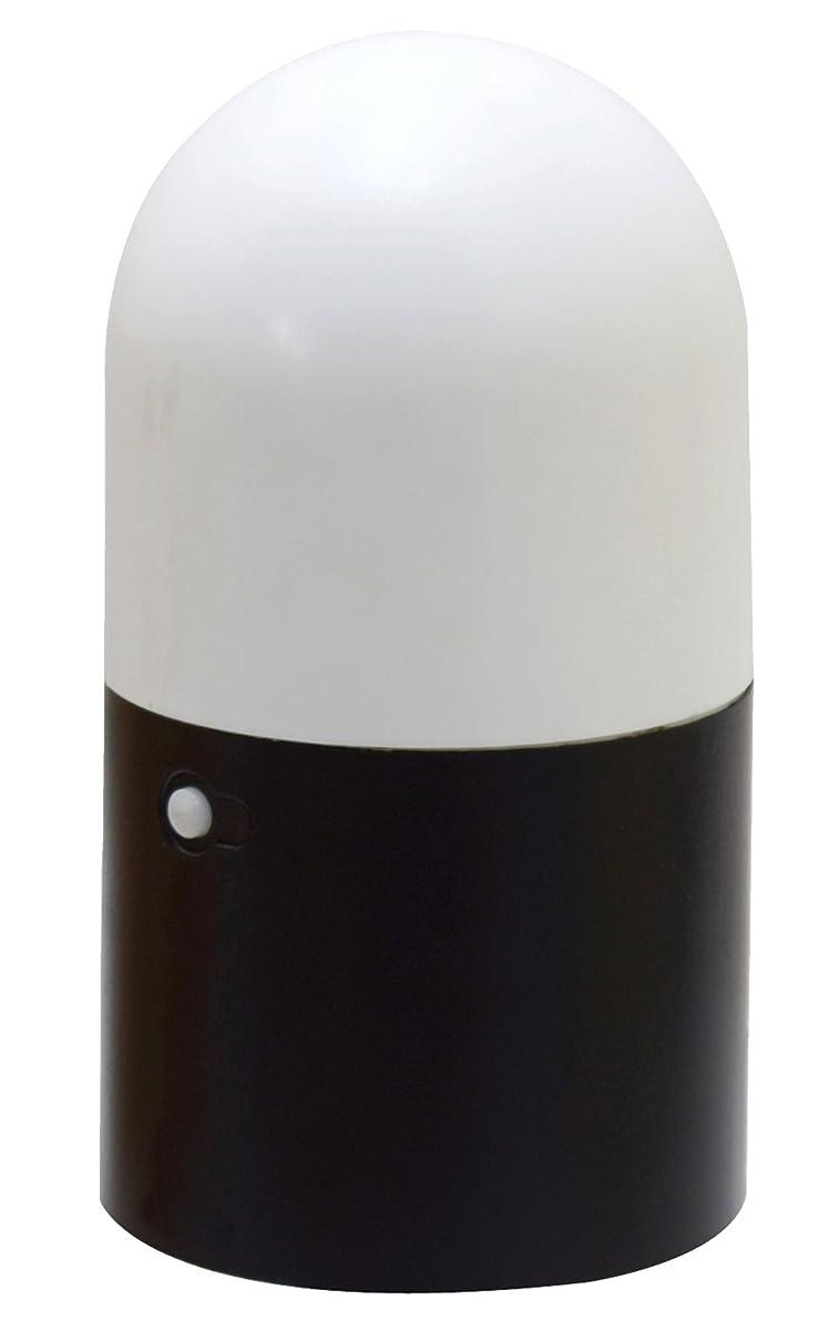 ファンド反対瞑想する高儀 EARTH MAN LEDガーデンセンサーライト GLT-10CLA