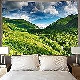 Montaña ondulada bosque y lago paisaje tapiz arte psicodélico colgante de pared toalla de playa manta tapiz A3 73x95cm