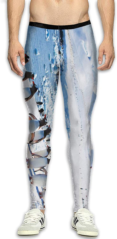 Techdecorhomee Mens Compression Leggings Yoga Pants Penguins Pattern Running Tights Shapewear Sports Jogger White