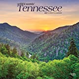 Tennessee Wild & Scenic 2020 12 x 12 Inch Monthly Square Wall Calendar, USA United States of America Southeast State Nature (English, Spanish and French Edition)