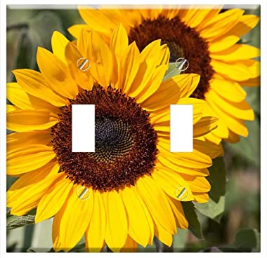 Switch Plate Double Toggle - Sunflower Helianthus Annuus Flower Nature Blossom