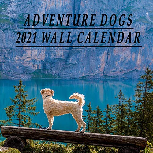 Adventure Dogs 2021 Wall Calendar: Hiking, Camping, and Traveling with Courageous Canines Funny Calendar 2021