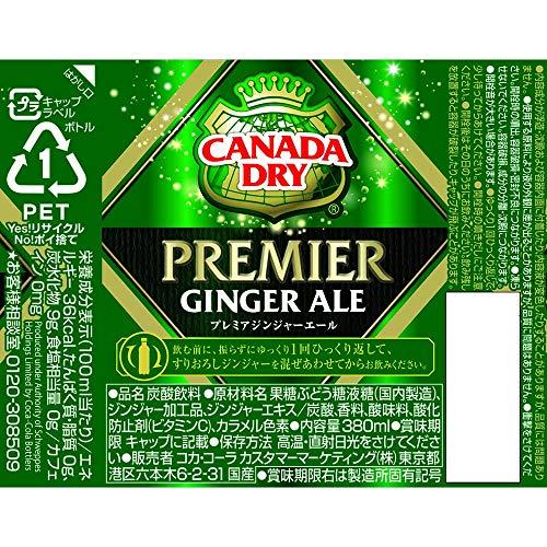 カナダドライプレミアジンジャーエール380mlPET×24本