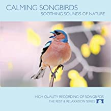 Best nature nature song Reviews