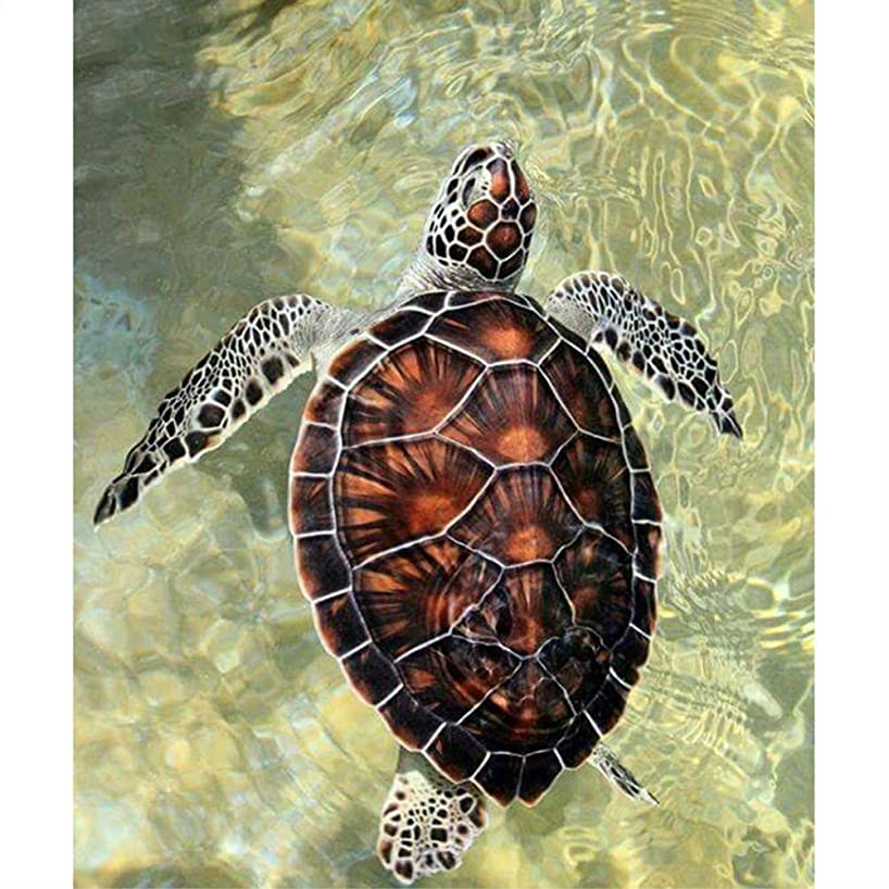 TianMaiGeLun Full Drill 5d Diamond Painting Kits Cross Stitch Craft Kit New DIY Kits for Kids Adults Paint by Number Kits (Turtle, 25x30cm, Round Drill)