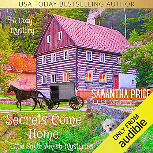 Secrets Come Home audiobook cover art