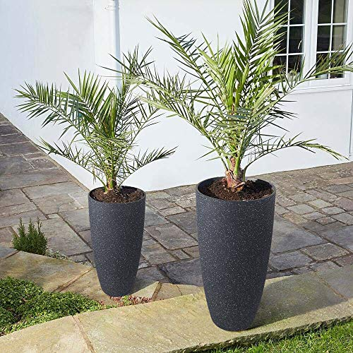 Tall Planters Outdoor Indoor