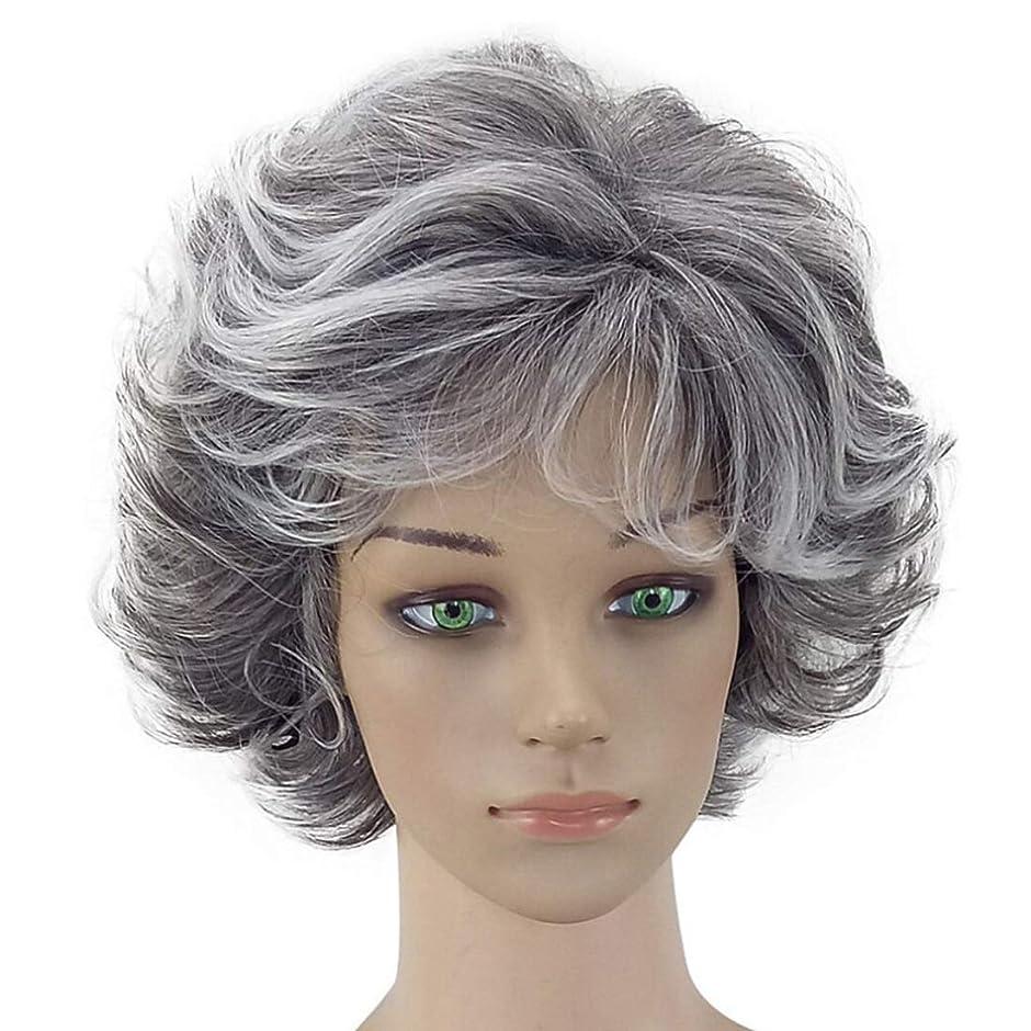 数学その後アクションMayalina おばあちゃん灰色のアフリカの短いアフロカーリーウィッグコスプレ衣装パーティーのための自然な波状のかつら無料ウィッグキャップ合成髪レースかつらロールプレイングかつら (色 : Granny Grey, サイズ : ワンサイズ)