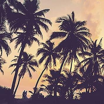 Music for Beach Parties - Caribbean Music