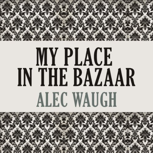 My Place in the Bazaar audiobook cover art