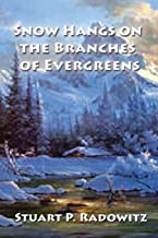 Snow Hangs on the Branches of Evergreens