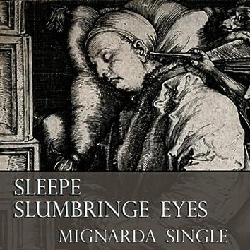 Sleepe Slumbringe Eyes