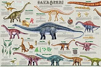 Laminated Sauropods Dinosaur Poster