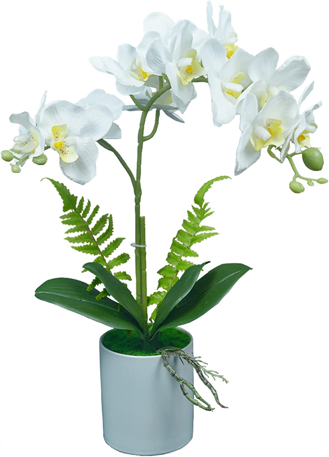 Artificial Silk Orchid Flowers Arrangement Max 73% OFF Raleigh Mall Or Vase Fake in Faux