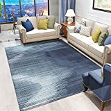 Alfombra Verano Salon,Alfombra Azul Pura, Antideslizante fácil de vaciar, cálida Alfombra Anti-ácaro ,alfombras habitacion -Azul_120x180cm