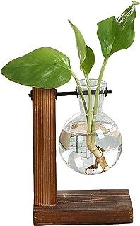 Skrivbordsplanterlampa vas, glas treerrarium med retro fast trä och metall svänghållare, transparent hållare för hydroponi...