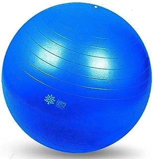 ヨガボール肥厚防爆スリミングフィットネスボール子供妊娠中の女性出産ボールバランスヨガボール (色 : B, サイズ さいず : 55cm)