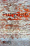 Purpose: the May-August 2012 Down in the Dirt collection book