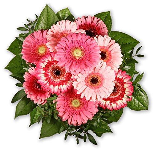 """Blumenstrauß Blumenversand """"Gerberagruß"""" +Gratis Grußkarte+Wunschtermin+Frischhaltemittel+Geschenkverpackung"""