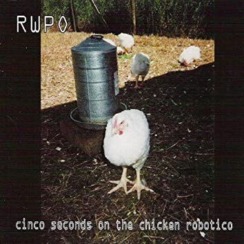 Cinco Seconds on the Chicken Robotico