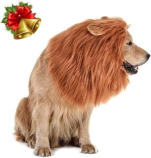 Best lion mane for dog for sale Reviews