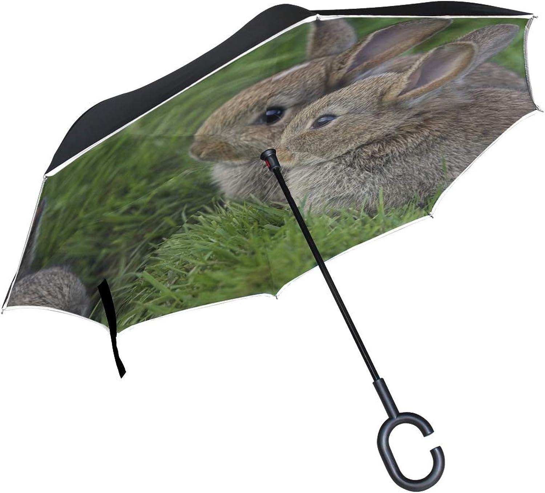 Rh Studio Ingreened Umbrella Grass Ears Rabbits Three Eyes Large Double Layer Outdoor Rain Sun Car Reversible Umbrella