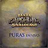 El Patron (feat. El Puma De Sinaloa0 [En Vivo] [Clean]