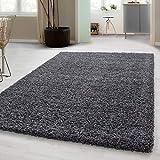 Hochflor Shaggy Teppich für Wohnzimmer Langflor Pflegeleicht Schadsstof geprüft 3 cm Florhöhe Oeko Tex Standarts Teppich, Maße:60x110 cm, Farbe:Grau