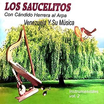 Los Saucelitos Instrumentales Vol.2