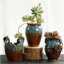 CHENTAOCS Flower pot creative breathable fleshy green plant ceramic flower pot 3 piece set (Color : D)