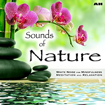 Sounds of Nature White Noise for Mindfulness Meditation and Relaxation